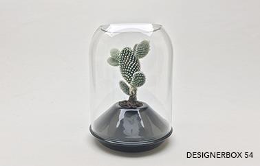 glass bell Matter design by Alain Gilles