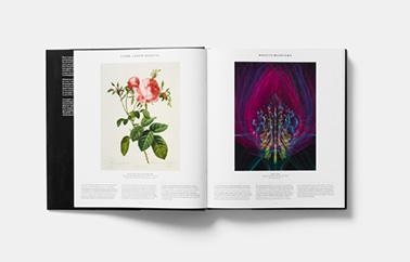 livre-ouvert-plant-phaidon