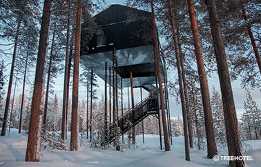 the 7th room treehotel