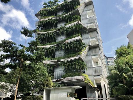 The Oliv Building Mok WeiWei Singapour