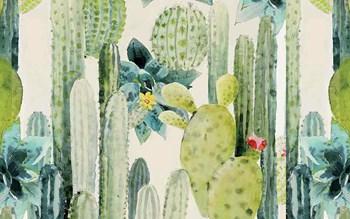 Le cactus, icône design et végétale