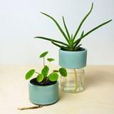 Pot PLANT JAR 4