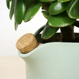 NATURAL BALANCE Self Watering Pot - green 4
