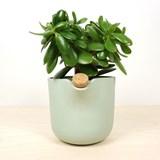 Pot à réserve d'eau NATURAL BALANCE - vert 5