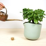 NATURAL BALANCE Self Watering Pot - green 2