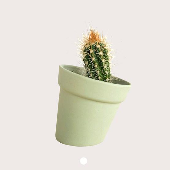DISTORT Flowerpot - green - Design : Studio Lorier