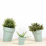 DISTORT Flowerpot - green 7