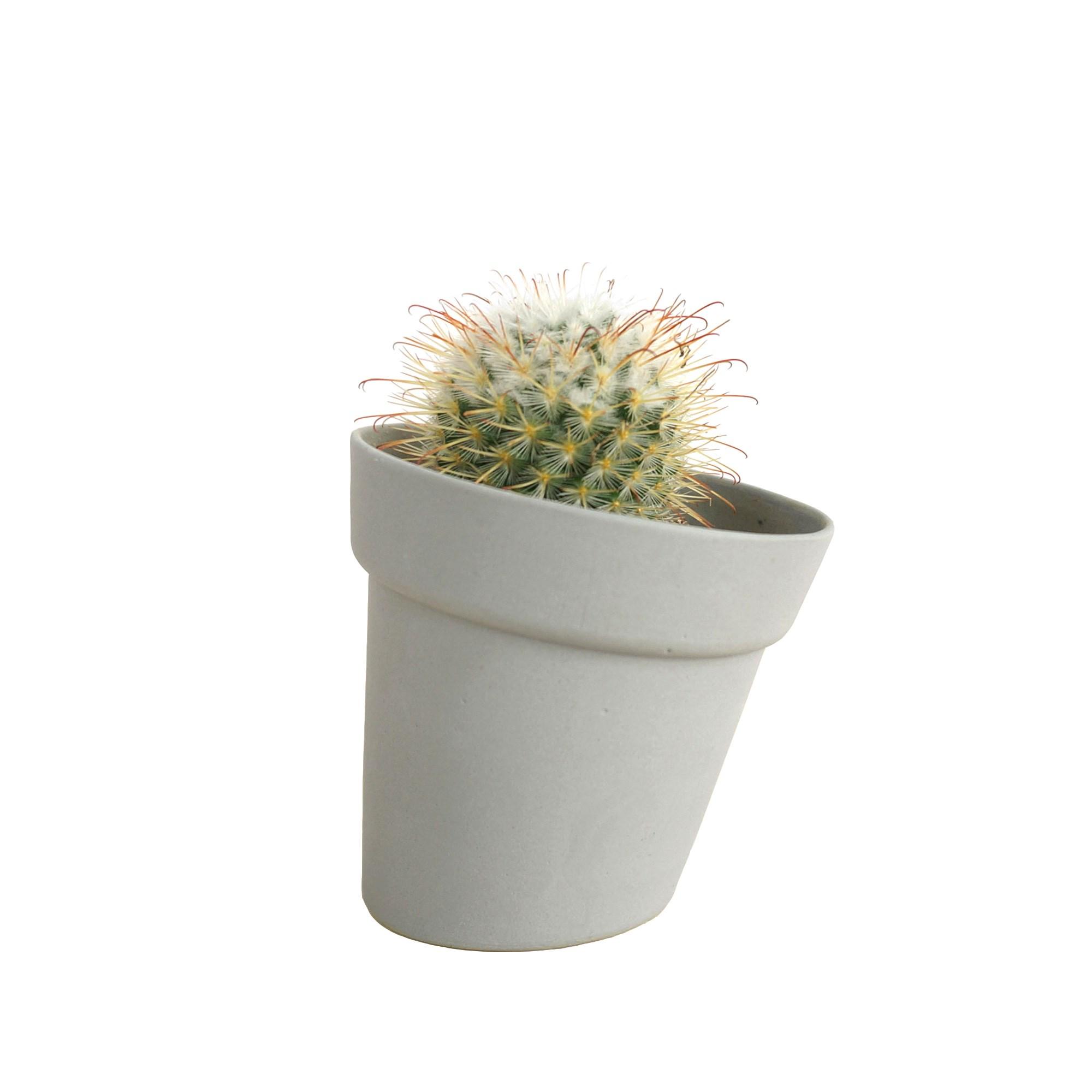 la Salle de Bain Violet CXZC Arbustes Topiaires Artificiels 20cm Croissant darbres Mini Plantes de Table Faux avec Pots de Fleurs Blancs pour la Maison Le d/écor de Bureau