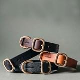 FIR leather dog collar - brown 6
