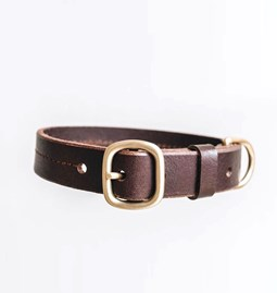 FIR leather dog collar - brown