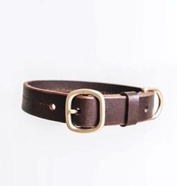 Collier pour chien en cuir FIR - brun