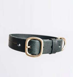 FIR leather dog collar - green