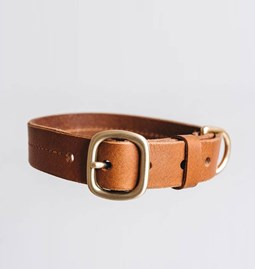 FIR leather dog collar - tan