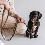 LASSO Dog leather leash - green 5