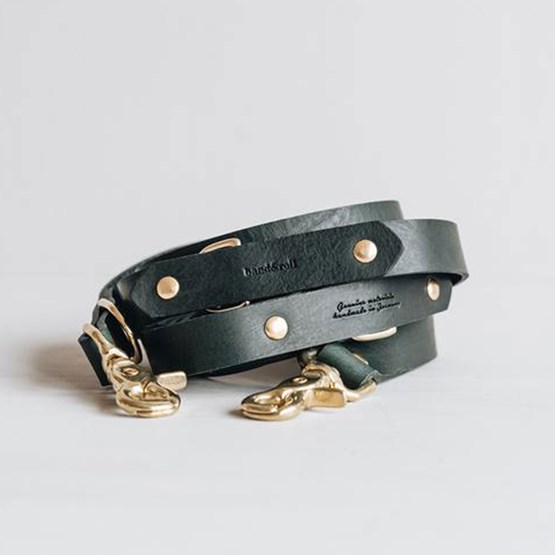 LASSO Dog leather leash - green - Design : Band&roll