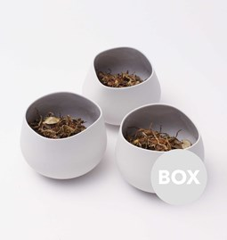 Pot CASUAL - Box 13