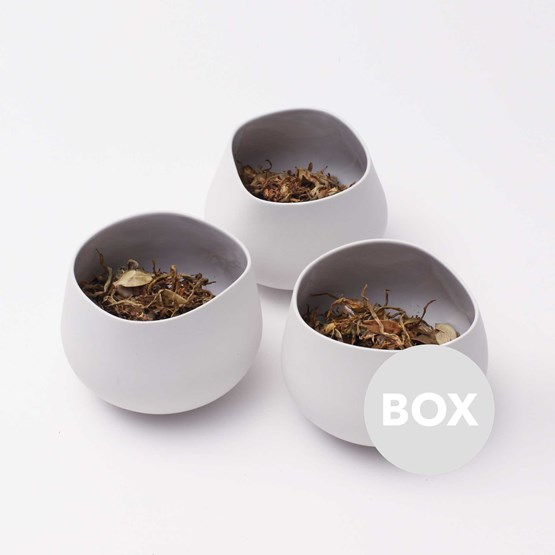 Pot CASUAL - Box 13 - Design : Piero Lissoni