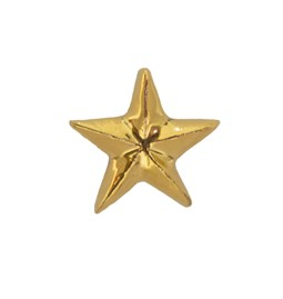 Golden Star Pin