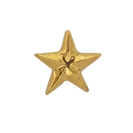 Golden Star Pin - Design : Stook Jewelry