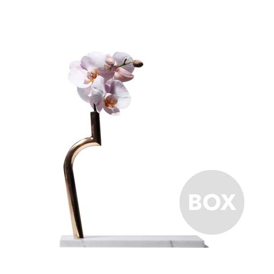 Vase JIN SHI - Box 15 - Design : design MVW