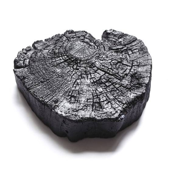 Stump – burnt wood - Design : MAUD Supplies