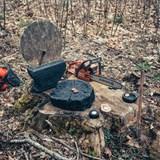 Stump – burnt wood 7