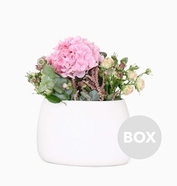 Vase Oblong LILY - Box 39
