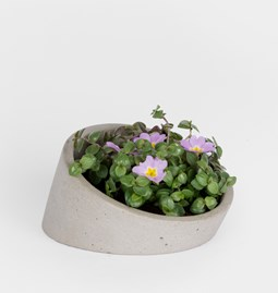 Planter Pot M4 - concrete