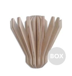 HOOKS Coat Rack - Box 20