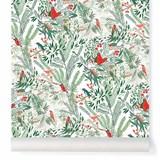 Wallpaper Jazz - coral 2