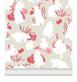 Wallpaper Haru - raspberry