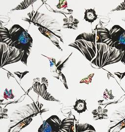 Wallpaper Multi Hummingbirds