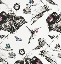 Wallpaper Pink Hummingbirds