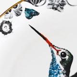Plate Hector Hummingbird 3