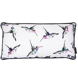 Coussin colibris mélangés