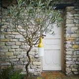 ELO outdoor lamp - yellow 7