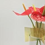 Vase PLURIEL - Designerbox 3
