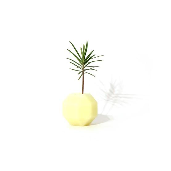 Vase aromatique Rombi - blanc - Design : Hugi.r