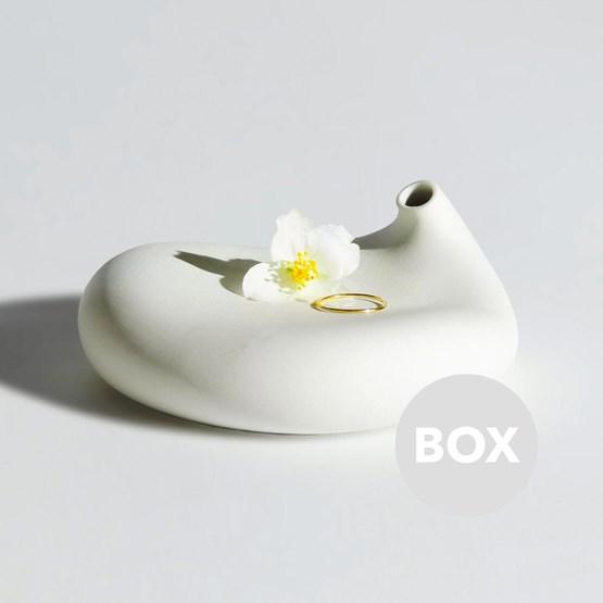 Soliflore EMOTION - Box 3 - Design : Aldo Bakker