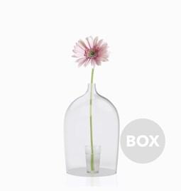 Globe ouvert en verre NIPPY - Designerbox