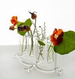 Flower pot & spice rack - Sio2 - Glass tableware