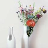 LEO-FERDINAND Carafe/Vase - Designerbox 2