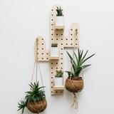 Pegboard Cactus 3