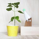 CHOUETTE wooden owl - Designerbox 2